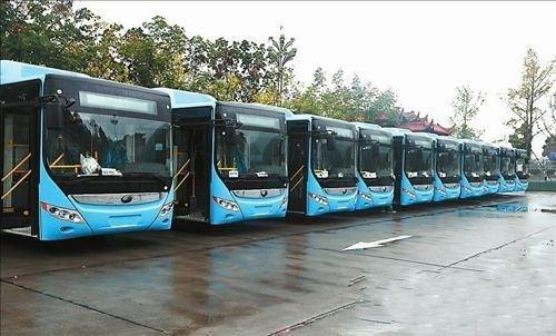 閬中人快看,455個建制村年內通公交車