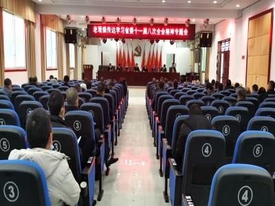 老觀鎮集中學習貫徹四川省委十一屆八次全會精神