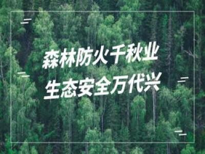 閬中古城景區官方發布:森林防滅火重于泰山,這些規定請記牢!