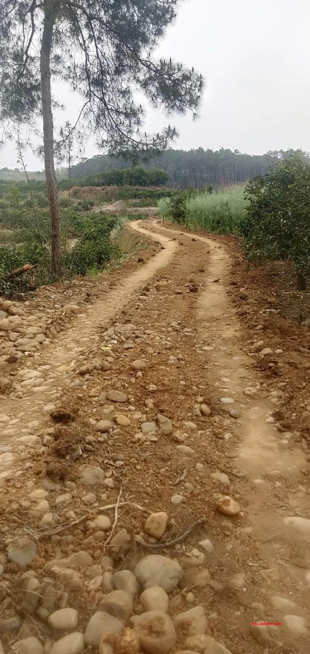 村里修路是好事,村干部应该要支持!