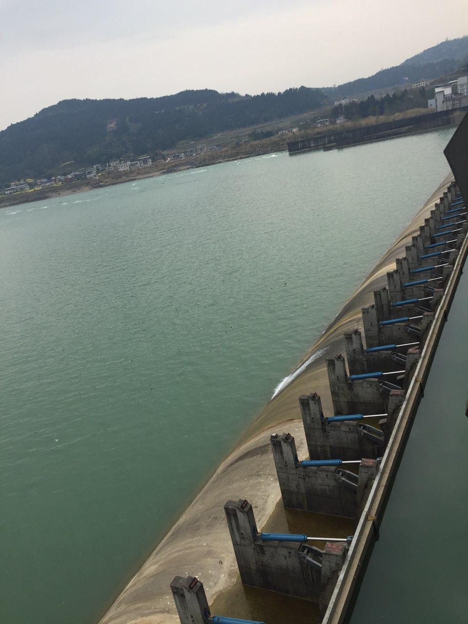 今天去河边玩看到沙溪杭电站有人在江边烧烤